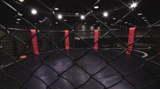 HERMANSSON vs VETTORI – UFC FIGHT NIGHT