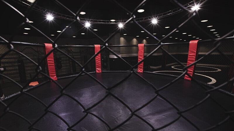 UFC MMA Fight Night